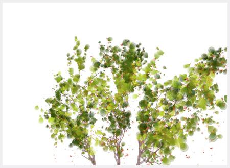 treegrowth image1