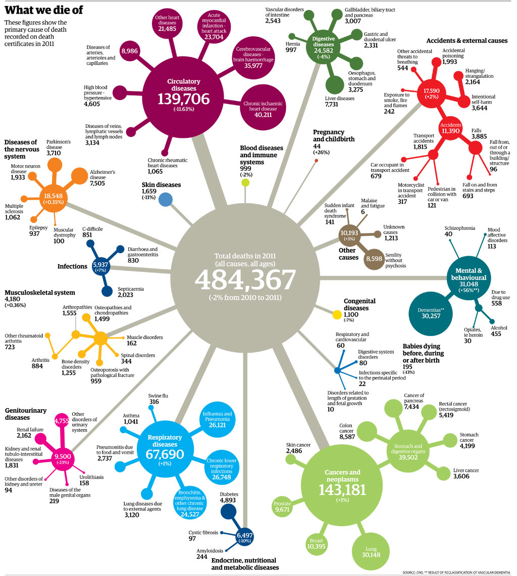 Lo Information Visualization Interactive Art