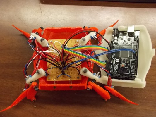 crabDSCN5795