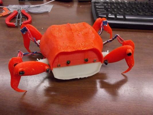 crabDSCN5813