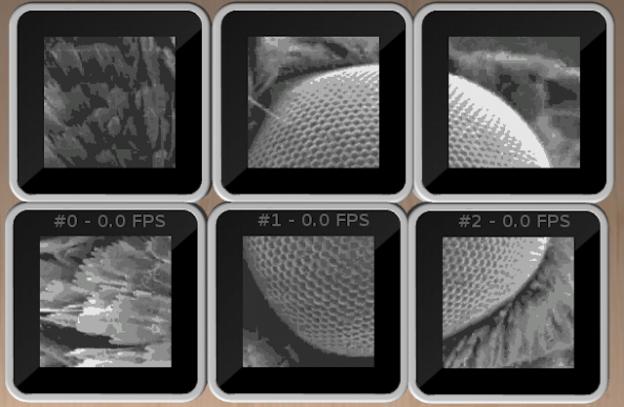 Silt, a Sifteo Image Explorer